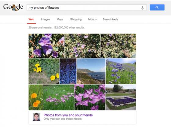 Google搜索整合Google+照片