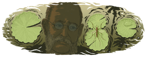 Google doodle:黄热病研究先驱卡洛斯 芬莱诞辰180周年