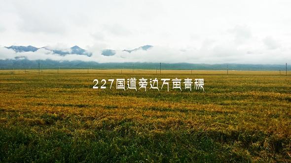 20160819_120716